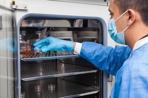 ung laboratorieforskare som introducerar en petriskål i en inkubator foto