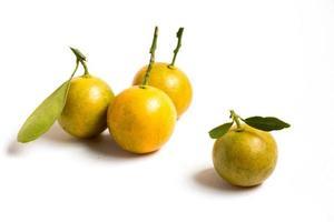 stängda upp av kumquat orange som placeras på vit bakgrund foto