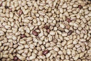 mat för bruna bönor foto