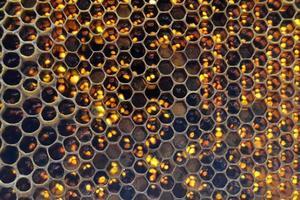 droppe av bi honung dropp från sexkantiga bikakor foto