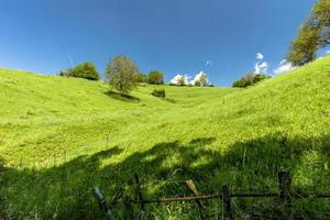 frodigt grönt fält foto