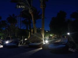 kväll med palmer i Hurghadaparken, Egypten foto