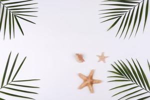 strandtillbehör, glasögon och hatt med skal och havsstjärnor på en färgad bakgrund foto