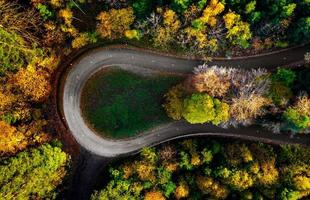 sicksackväg, inramad av orange höstskog foto