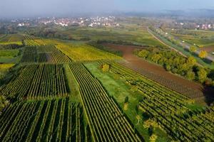 en drönare utsikt över Vosges foten, Frankrike foto