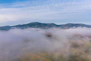 vingårdar i Vosges foten, Frankrike foto