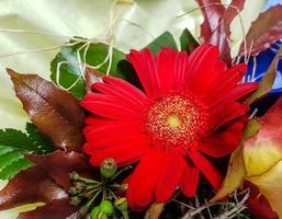 brudbukett med olika blommor foto