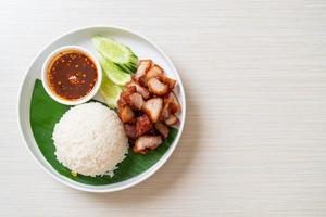 stekt magfläsk med ris med kryddig sås i asiatisk stil foto