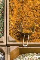 detalj av indiska heta kryddor foto