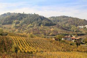 vingårdar och landsbygden i Piemonts inlandet, Italien foto