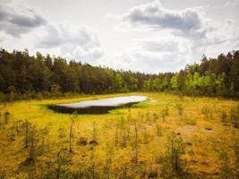 Flygfoto Niauka Lake i Kurtuvenai Regional Park foto