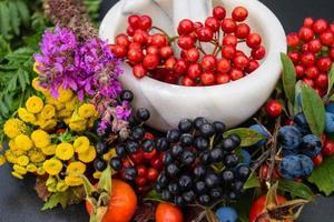 alternativ medicin med farmaceutiska örter frukt och bär foto