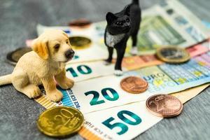 vad kostar ett husdjur foto