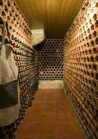 vingård tillverkad med byggstenar i Castilla y Leon, Spanien foto