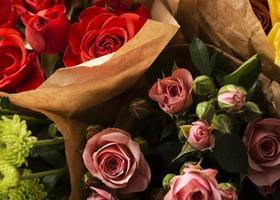 platt låg vackert blommade färgglada rosblommor foto