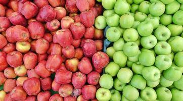 frukt rött och grönt ekologiskt äpple foto