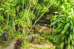 monsun regn tar nim vattenfall hemlig magisk trädgård koh samui. foto