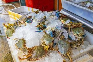 rå thailändsk skaldjur i Koh Samui, Thailand foto
