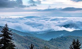 vårtid på Blue Ridge Parkway Mountains foto