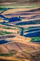 magiska vete gård fält i palouse washington foto