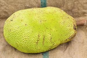 ung jackfrukt på kanon foto