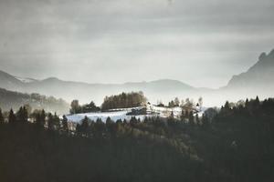 isolerat hus på ängen omgiven av skogen foto