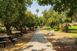morgonsolig utsikt över picknickområdet i occidental college foto