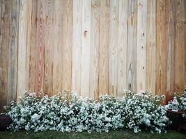 vita blommor med vintage trä bakgrund. copyspace för text. foto