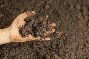 hand som håller svart jord för att odla grödor världsjordkoncept foto