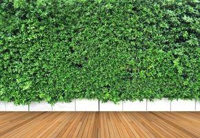 trägolv och vertikal trädgård med tropiskt grönt blad foto