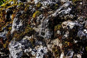 2021 05 15 cortina rock and moss foto