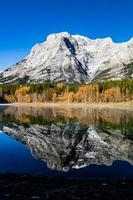 kildamm och en krypande höstdag. spray valley provincial park. foto
