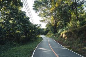 vägen till gården och åkrarna foto