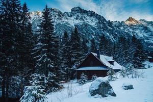 trähus i bergen täckt med snö och blå himmel foto