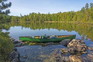 redo att utforska en solig dag i norra skogen foto