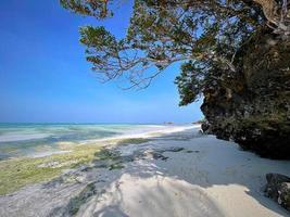 strand i zanzibar, tanzania. resa till ett exotiskt land foto