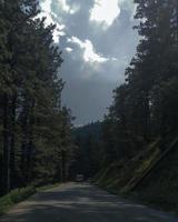 väg till himlen gulmarg kashmir foto