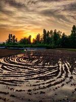 solnedgång i kashmir foto