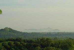 disföroreningsproblem överträffade normerna på landsbygden foto