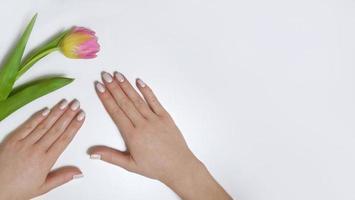 kvinnlig manikyr på en vit bakgrund med en tulpan. foto