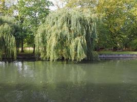 river cam i Cambridge foto