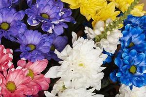 arrangemanget vackra blommor bakgrund foto