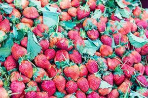 hög röda jordgubbar på marknaden foto
