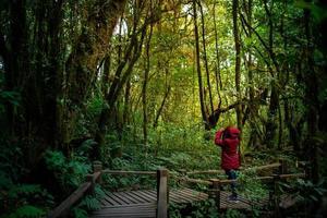 kvinnofotograf som tar foto på bergskogen på morgonen