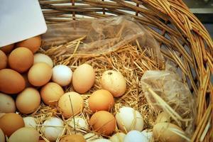 mat protein organiskt kyckling rå ägg foto