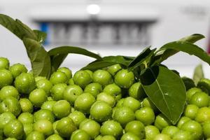 färsk och utsökt plommonfrukt foto