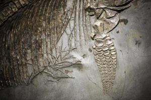 forntida förhistorisk dinosauriskelett fossil foto
