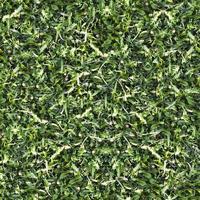 sömlös grönt gräs mark konsistens foto