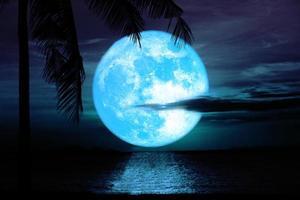 reflektion blå månen stiger med kokosnöt träd moln över havet på natthimlen foto