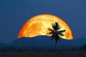 superblodmåne och silhuett kokosnötsträdberget på natthimlen foto